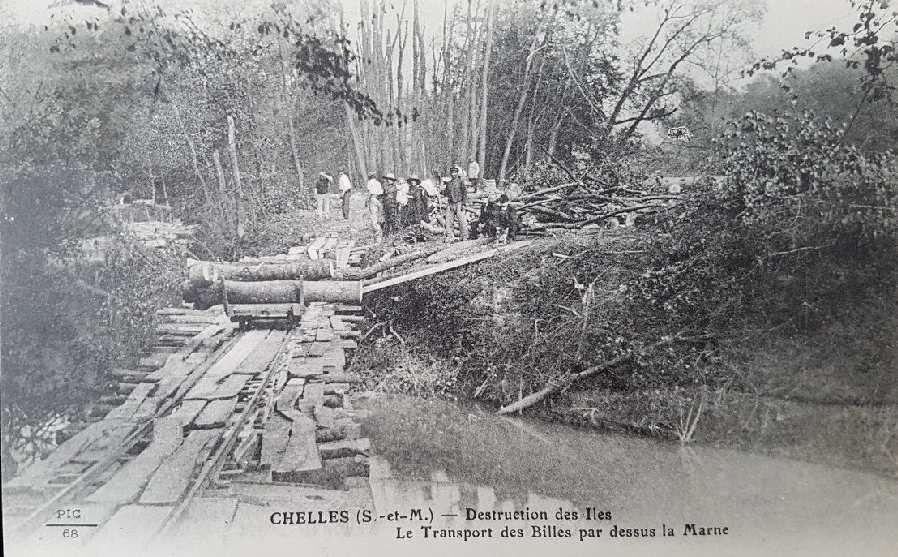 Des arbres de production sur les îles de Chelles en 1900