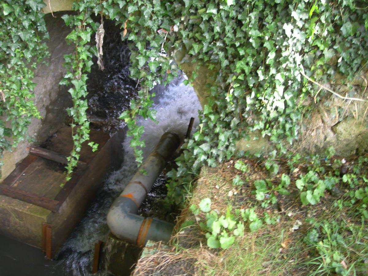 Rivière de Chelles et ru de Chantereine : jonction des eaux pluviales