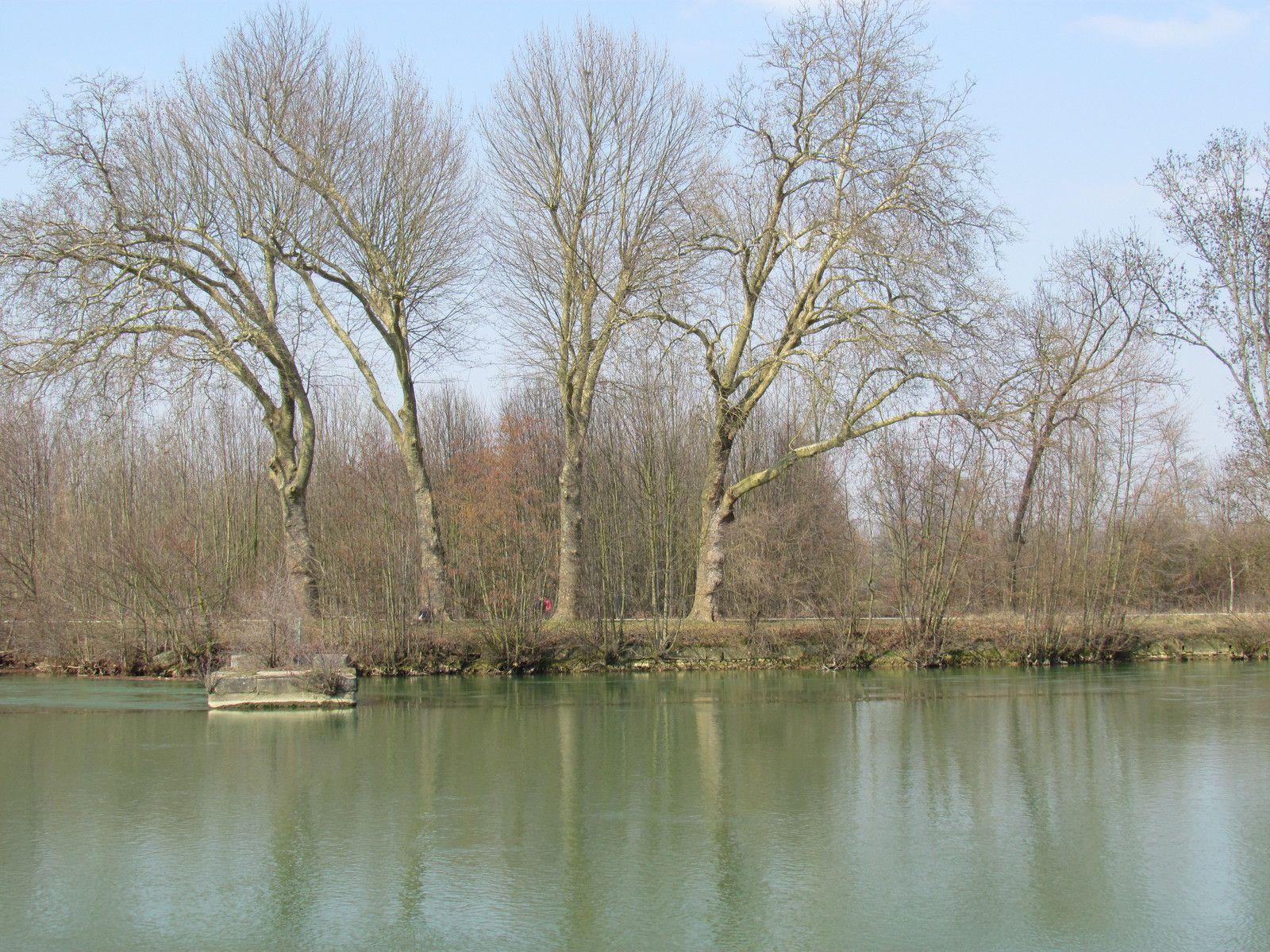 L'ancien barrage de Noisiel sur la Marne