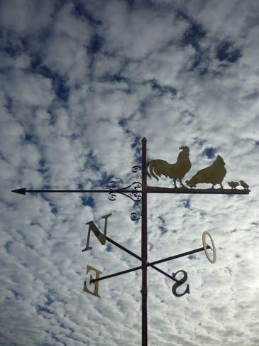 Girouette coq poule poussins de Bresse