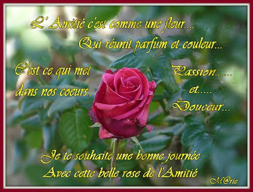 LE PETIT TAG DU JOUR !! 27/3/20