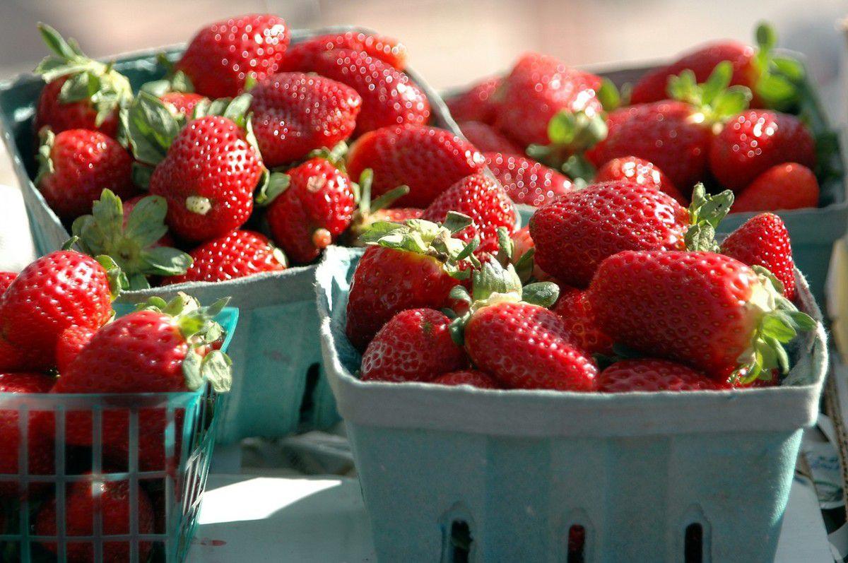 Crème aux oeufs et aux fraises