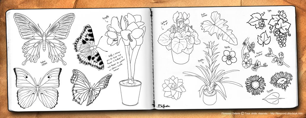 Double-page n°46