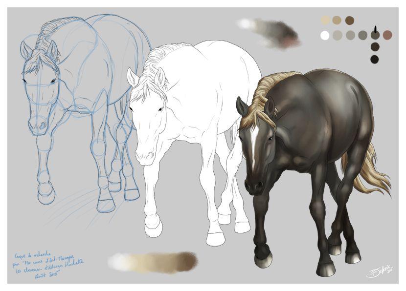 Nouveaux croquis de chevaux à la tablette graphique