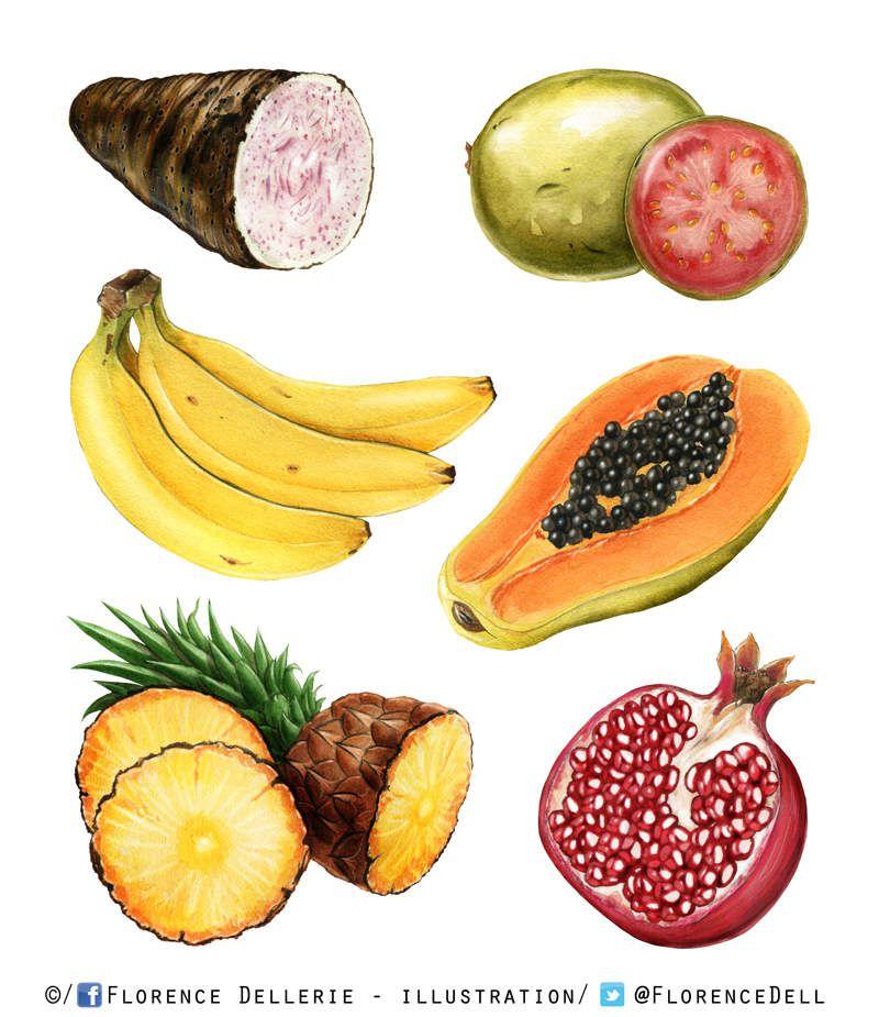 Illustrations de fruits et légumes exotiques à l'aquarelle