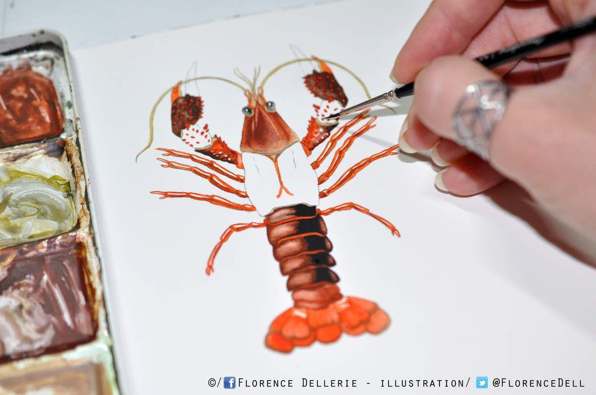 Illustration scientifique naturaliste : écrevisse à l'aquarelle
