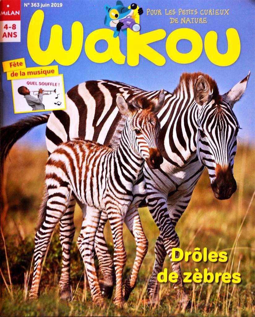 Mes illustrations dans le numéro de juin du magazine Wakou