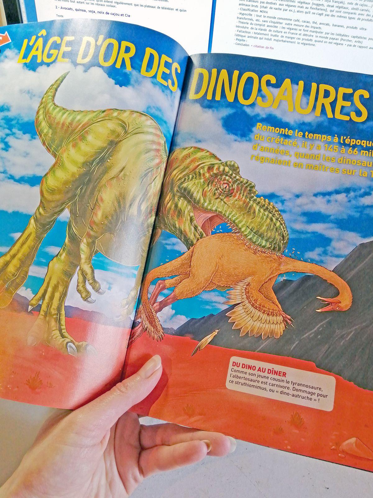 Mes illustrations paléontologiques sont dans Wapiti !