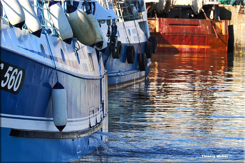 Vues sur le Port de Pêche de La Turballe - série 2