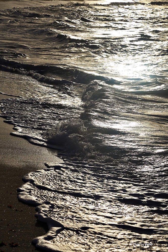 Les vagues d'hiver