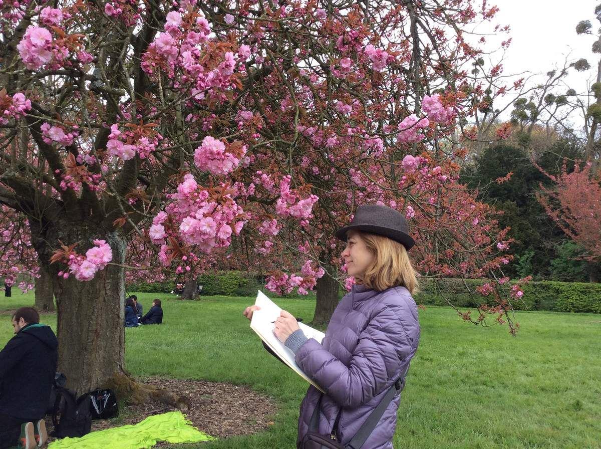 Comment Dessiner 6 Fleurs De Sakura Cerisier Japonais Tutoriel Mademoiselle Kati O
