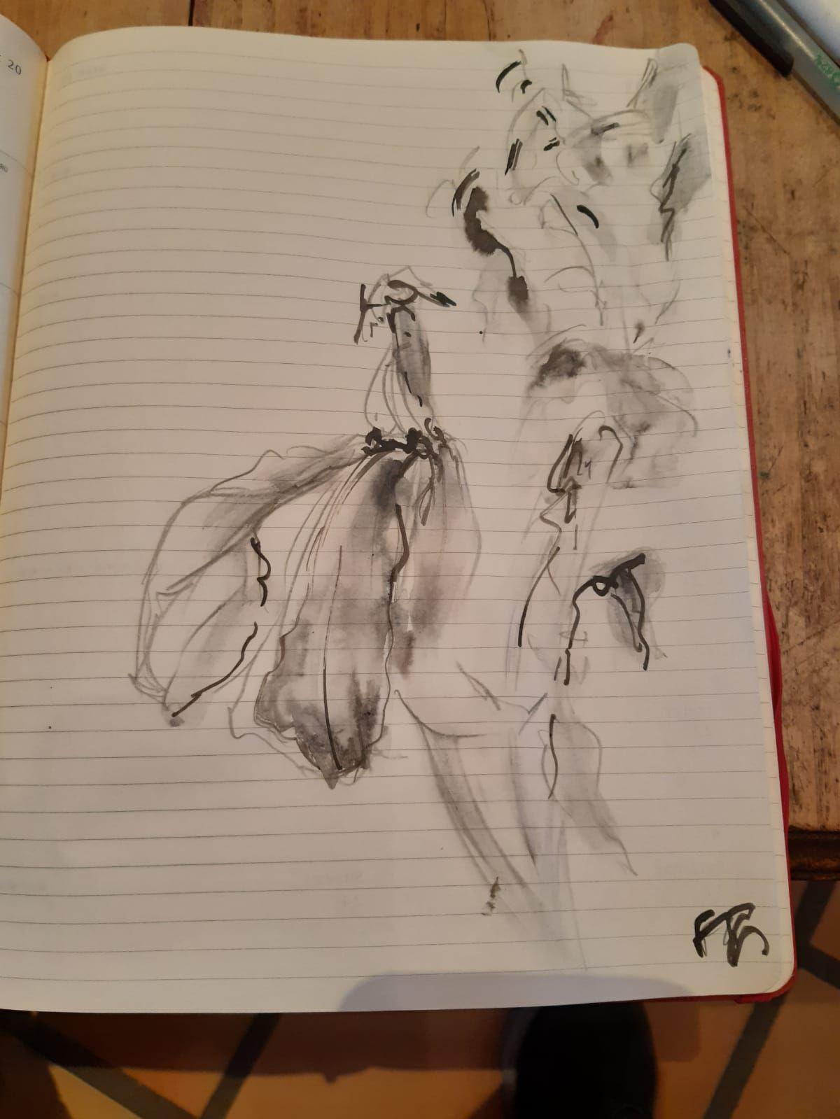 Je dessine sur mon Moleskine.....