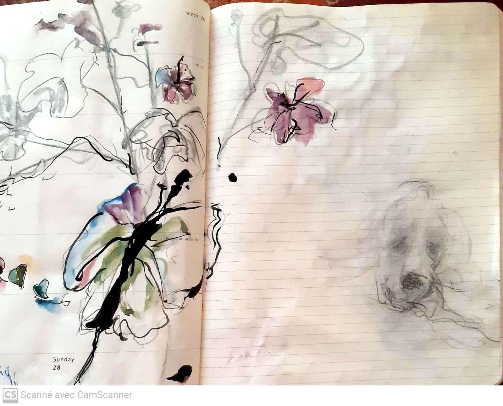 Dessiner , dessiner , dessiner......