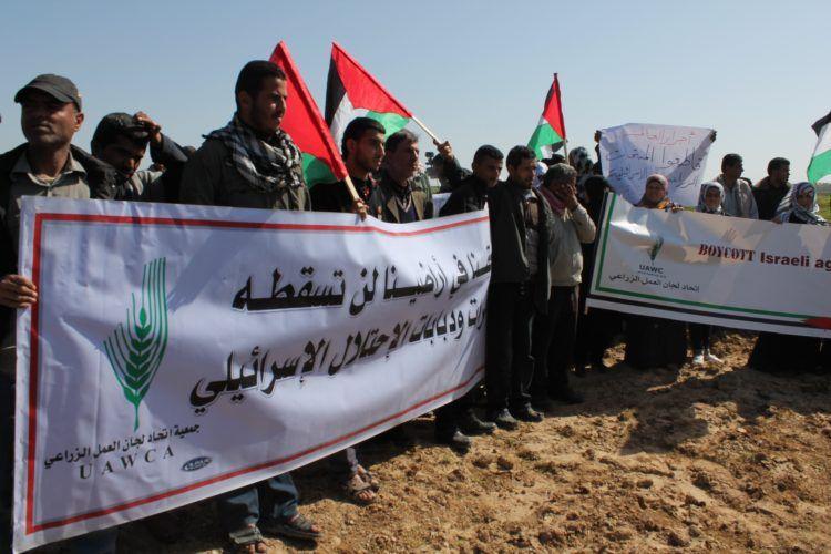 1er mai : les syndicats palestiniens appellent à l'intensification du BDS