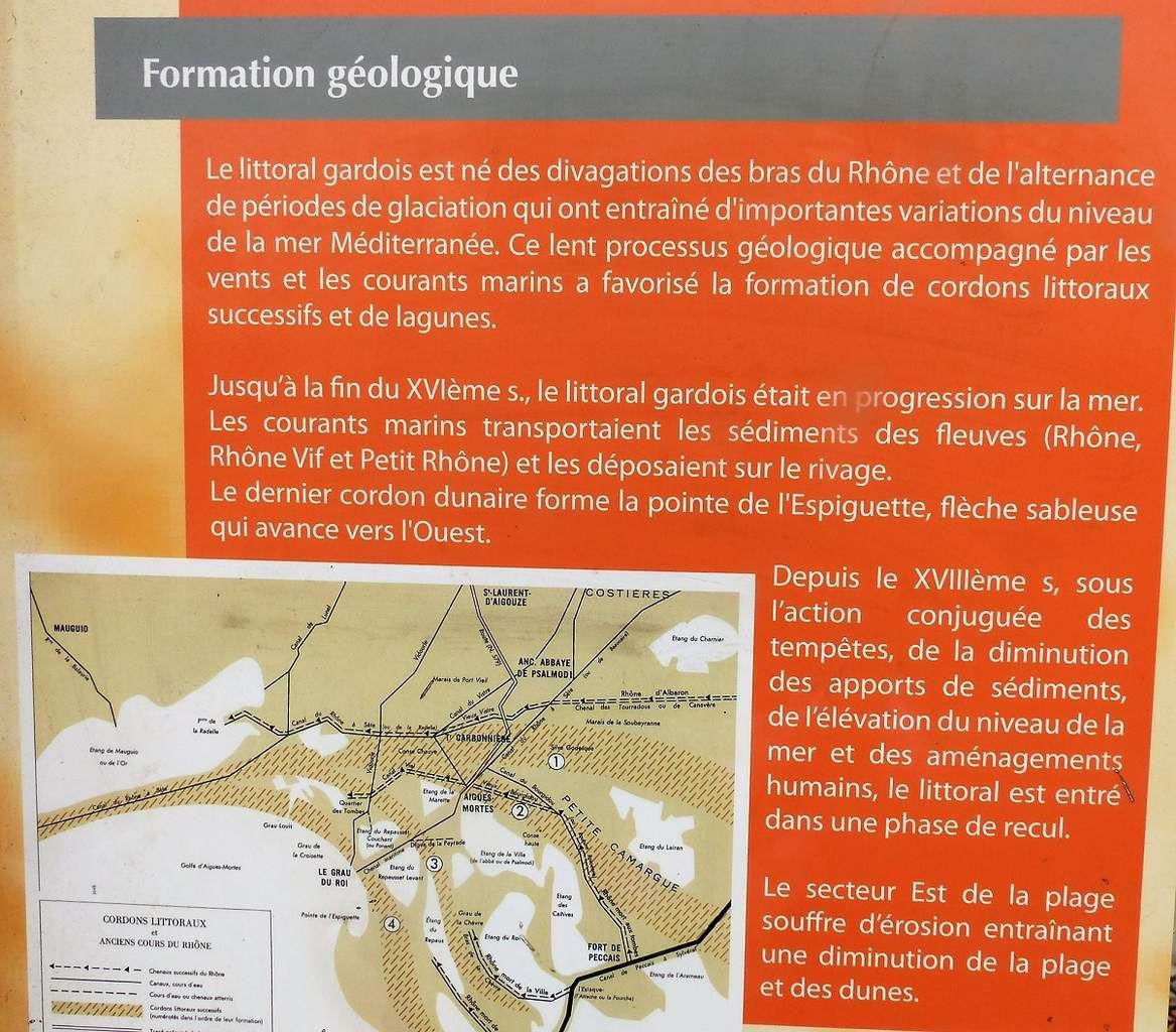 Le site naturel protégé de l'Espiguette