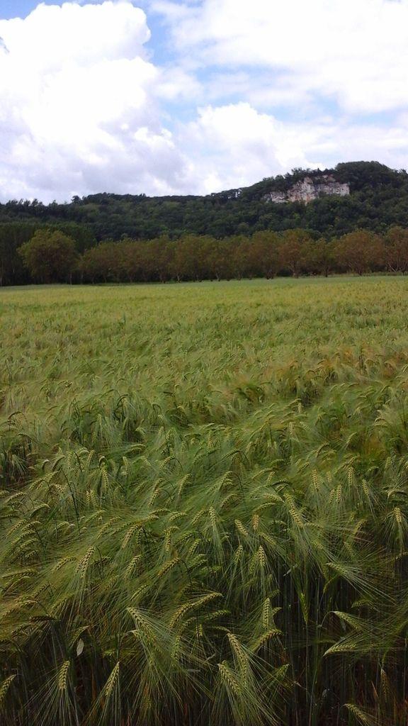 J 4 - De Castelnaud la Chapelle à Domme