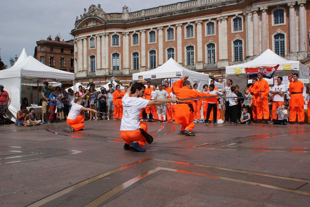 Demonstration Forom des langues Toulouse 2017
