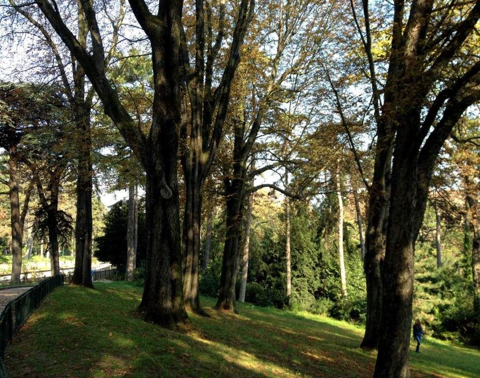 Parc Montsouris - 14eme