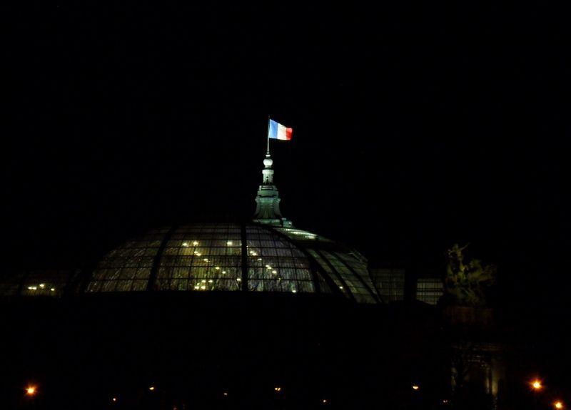 Grand Palais by night