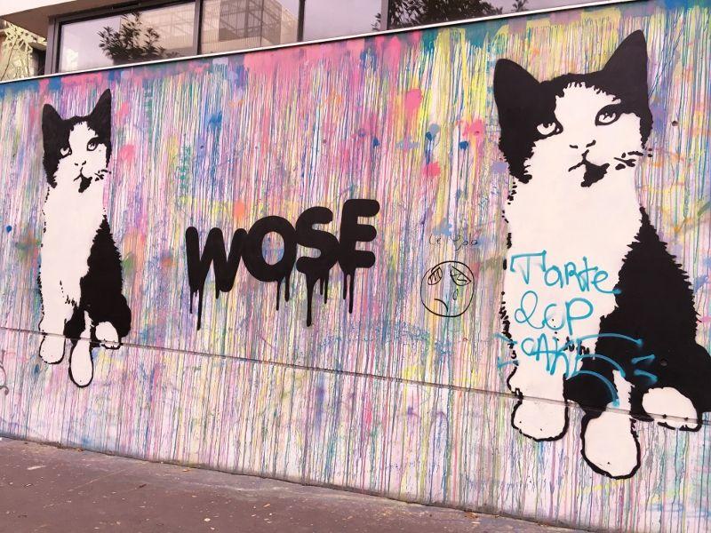 Magnifique street art rue Françoise Dolto 13eme