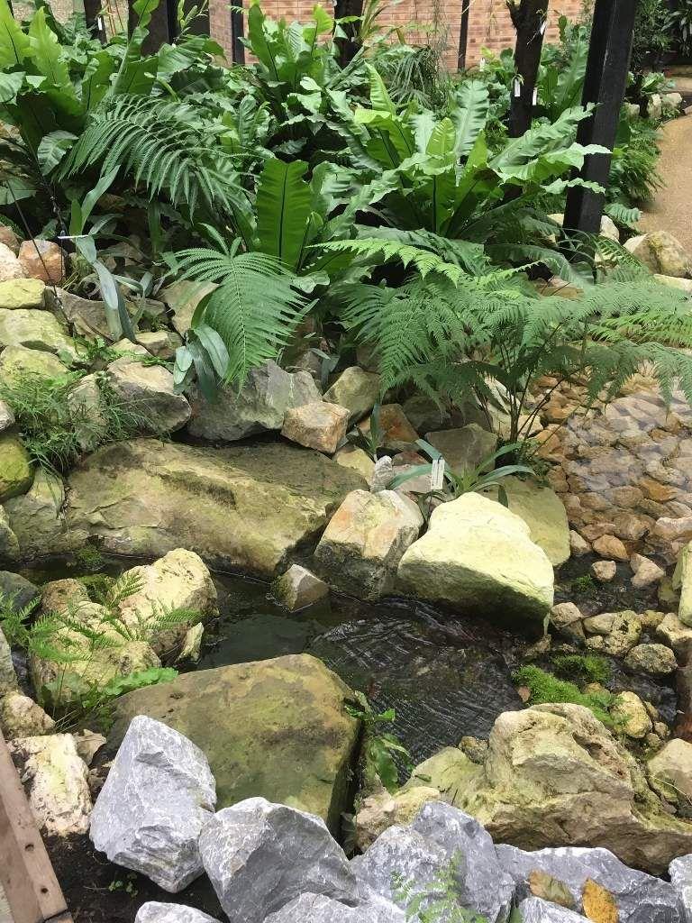 Parc floral la Guyane suite 12eme
