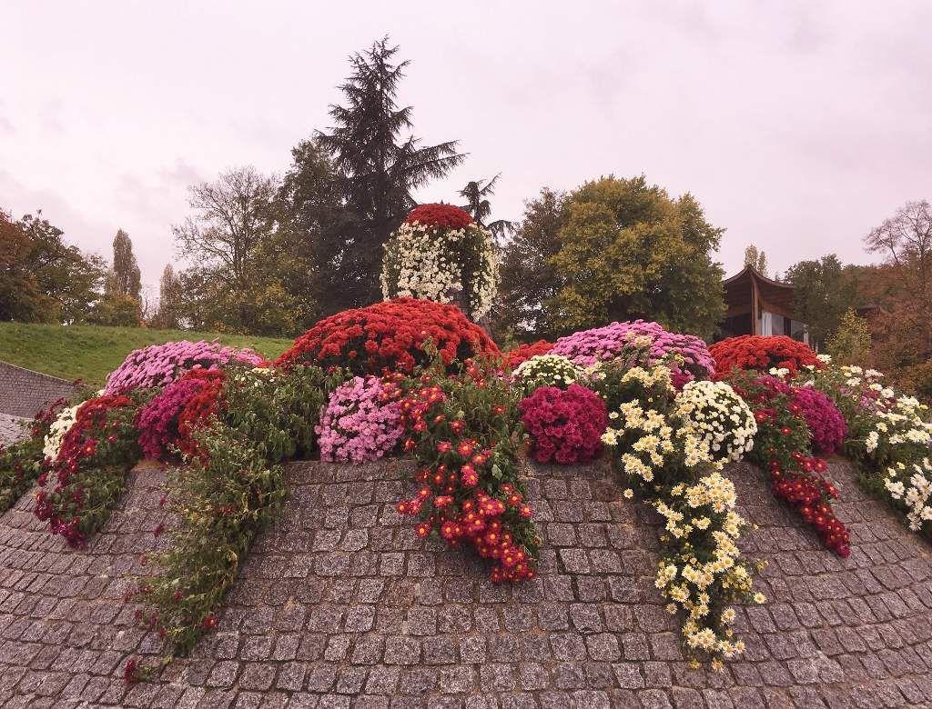 Parc floral 12eme