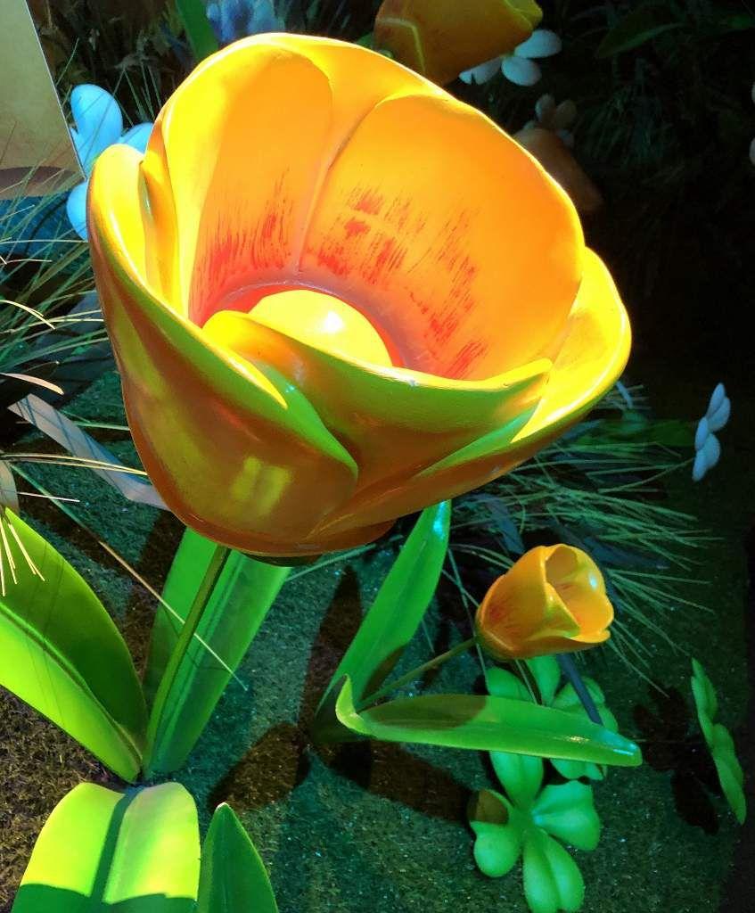 Expo SCHTROUMPF les champignons et les fleurs 15eme