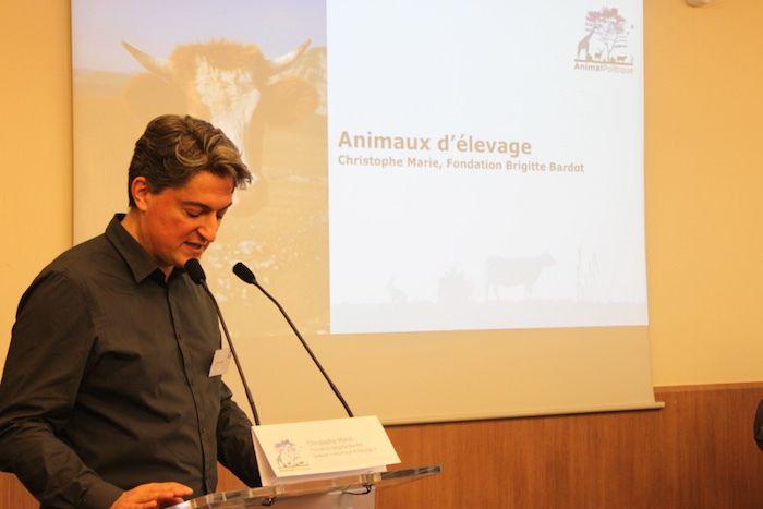 «Nous évaluerons les candidats en fonction de leurs engagements», dit Christophe Marie, porte-parole de la Fondation Brigitte Bardot.
