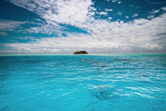 Les zones hypoxiques sont des régions où le taux d'oxygène est au plus bas, provoquant l'asphyxie de la faune marine (photo d'illustration). GREGORY BOISSY / AFP