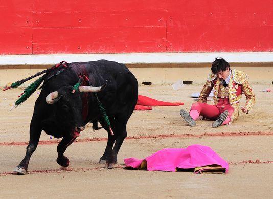 L'interdiction de la corrida fait partie des sujets que 26 ONG  veulent installer dans le débat politique. ANDER GILLENEA / AFP