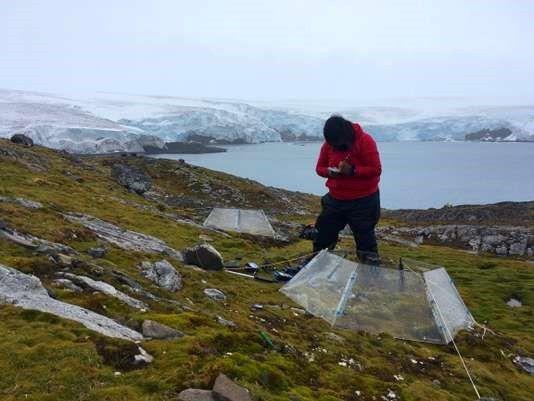 Mesures de températures en Antarctique, le 2 février. MATHILDE BELLENGER / AFP