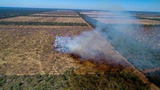 Déforestation par le feu en Argentine, en août2017. JIM WICKENS / MIGHTY EARTH
