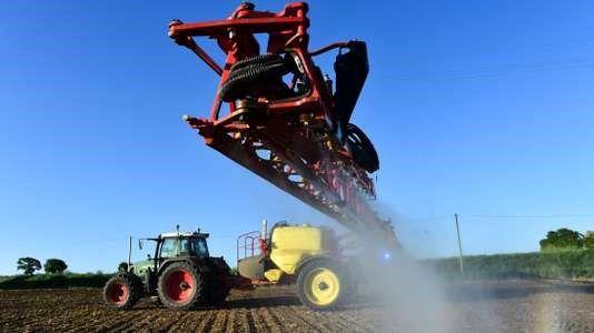 Ependage d'herbicide au glyphosate sur un champ de maïs sans labour à Piacé, dans la Sarthe, le 11 mai. JEAN-FRANCOIS MONIER/AFP