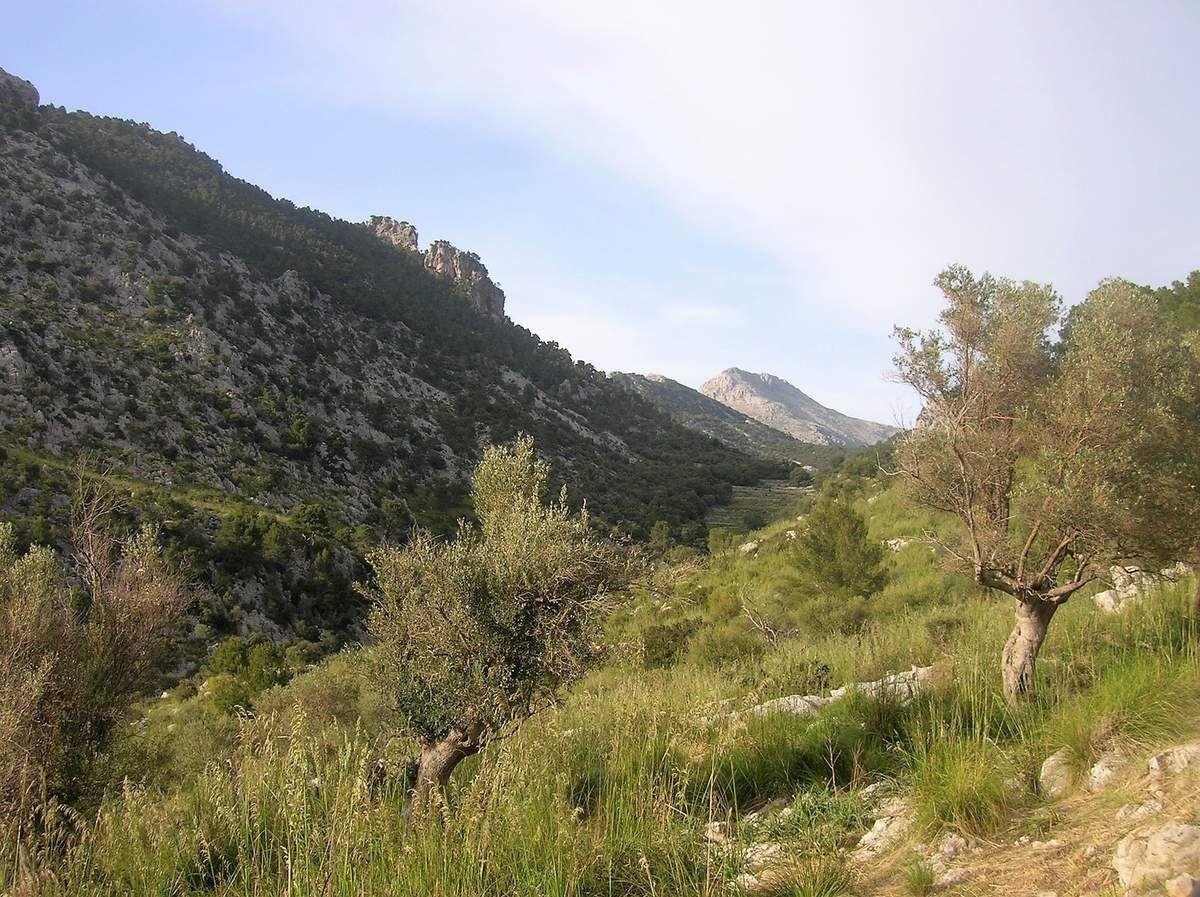 26.04.2018 – Non loin du refuge de Tossals verds