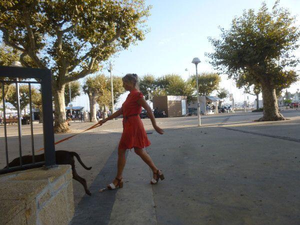 Cannes. Les Allées. 9 Oct. 2014. © Jean-Louis Crimon