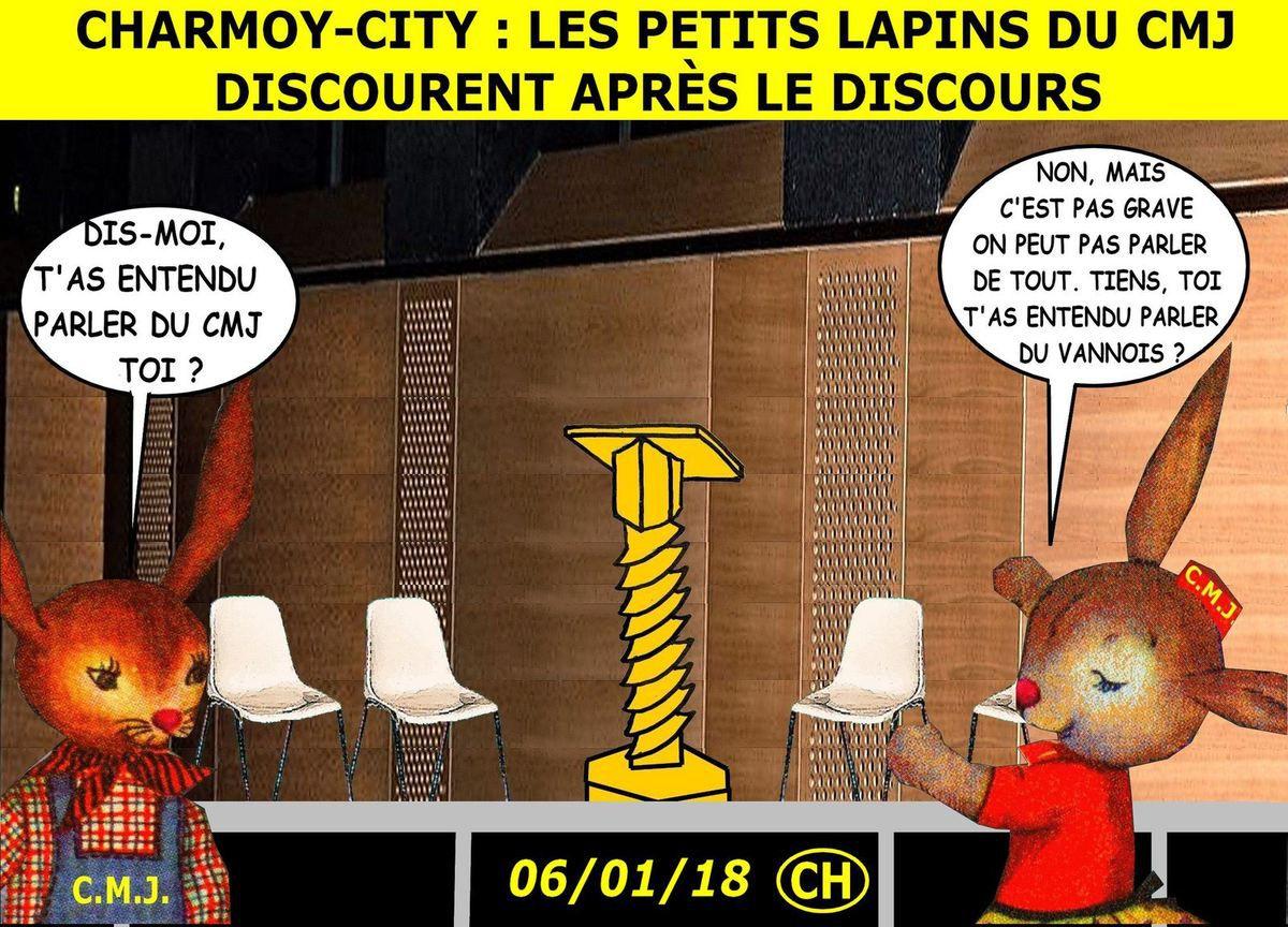 Charmoy-City, les petits lapins du CMJ discourent après le discours
