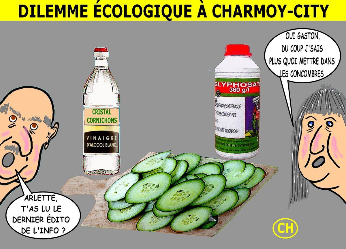 Dilemme écologique à Charmoy-City