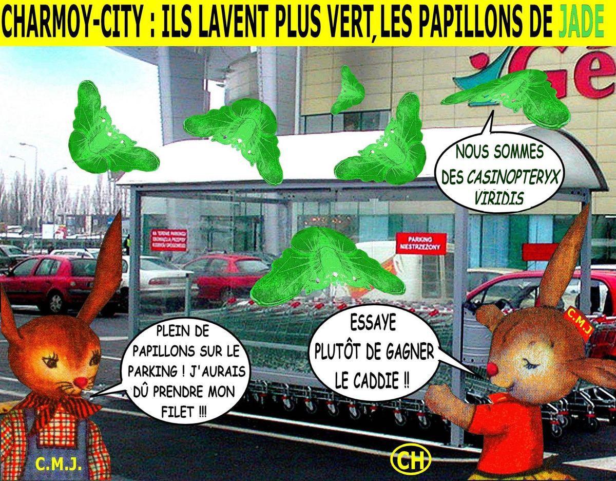 Charmoy-City, ils lavent plus vert les papillons de jade