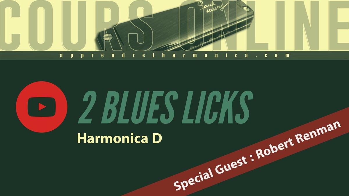 2 Blues licks - Harmonica D - Special Guest : Robert Renman