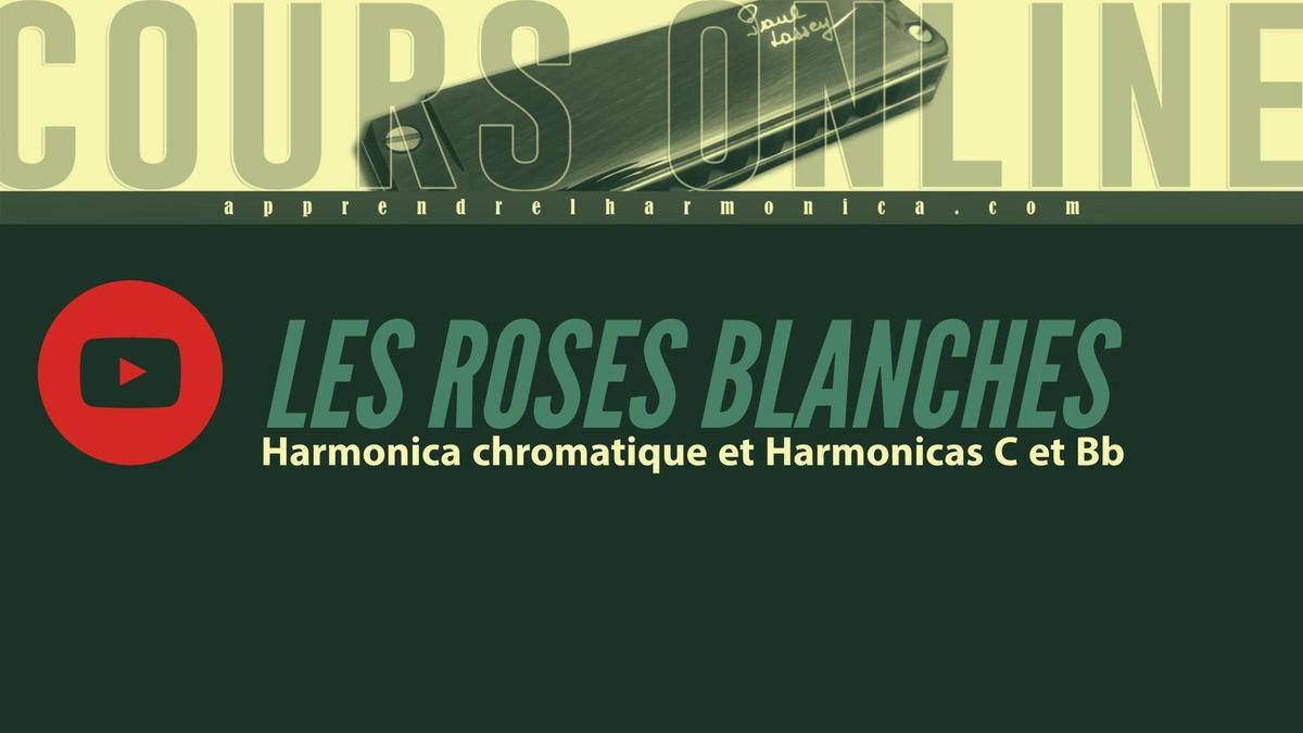 Les roses blanches - Harmonicas C et Bb - Harmonica Chromatique