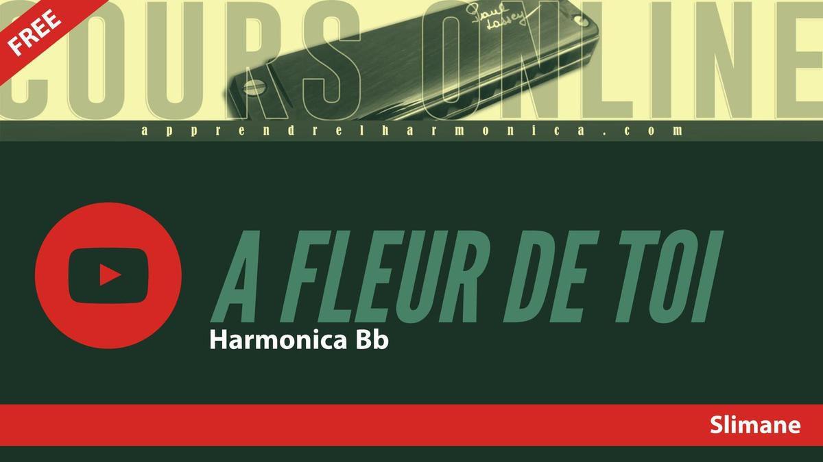 Slimane - A fleur de toi - Harmonica Bb