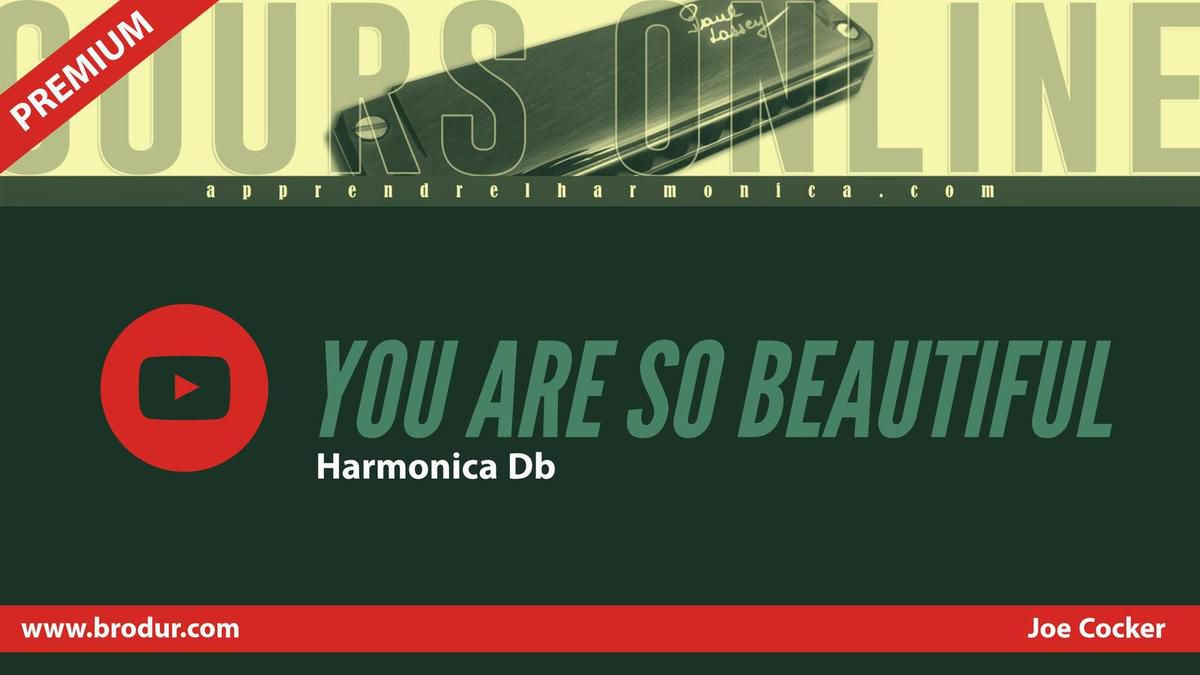 Joe Cocker - You Are So Beautiful - Harmonica Db et Harmonica chromatique