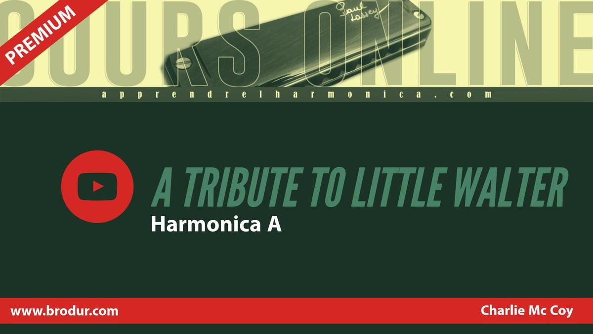 Charlie McCoy - A Tribute To Little Walter - Harmonica A