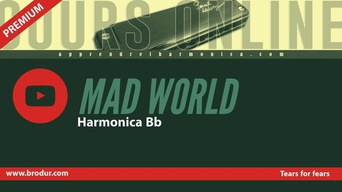 Tears for fears - Mad World - Harmonica Bb