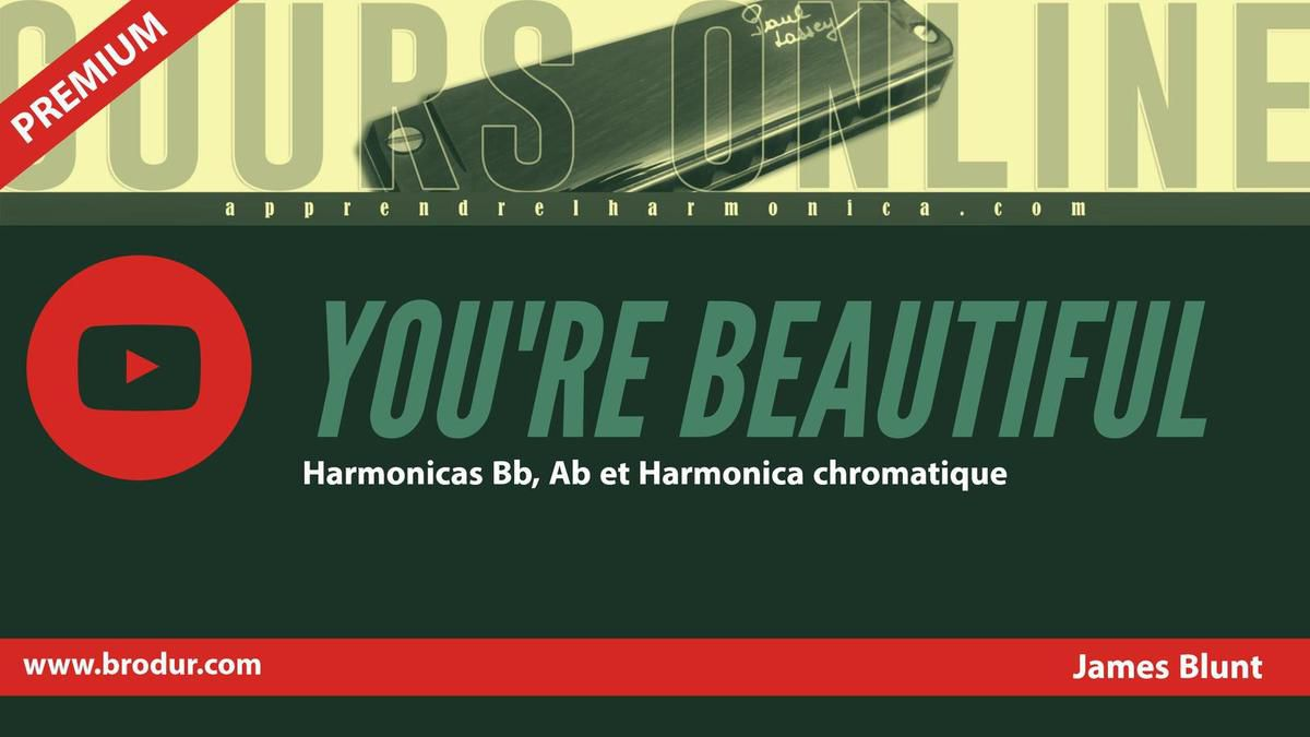 James Blunt - You're Beautiful - Harmonica Bb, Ab et Harmonica chromatique