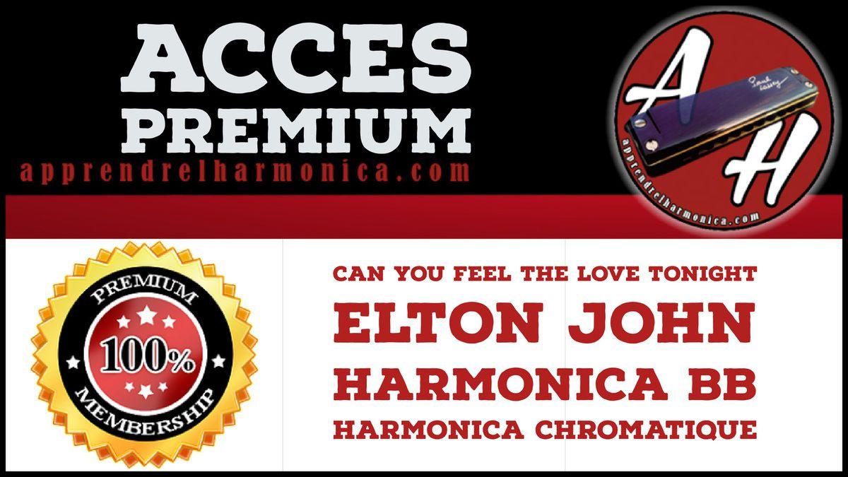 Le roi Lion - Can You Feel the Love Tonight - Harmonica Bb et Harmonica chromatique