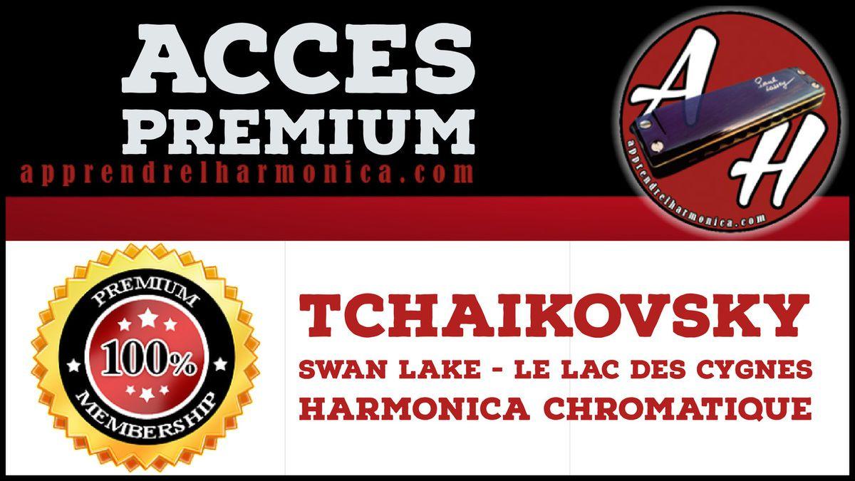 Tchaikovsky - Swan Lake - Le lac des cygnes - Harmonica chromatique