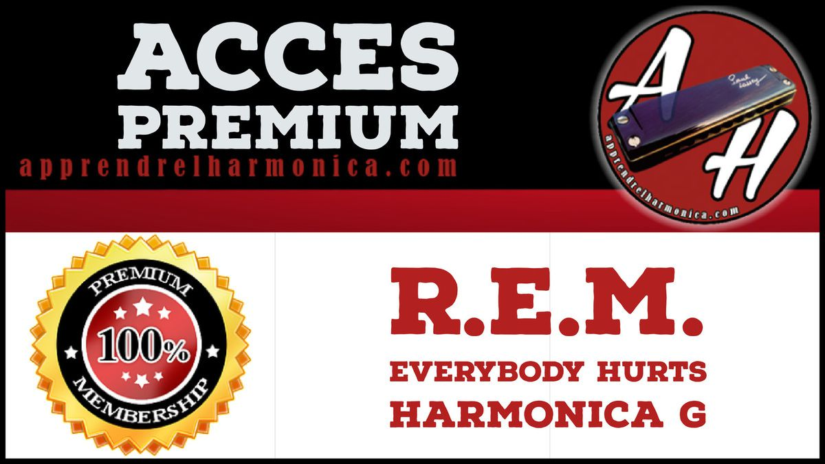 R.E.M. – Everybody Hurts – Harmonica G