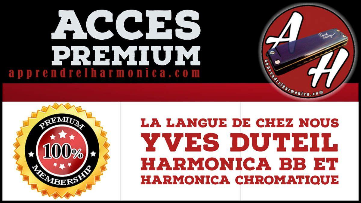 Yves Duteil - La langue de chez nous - Harmonica Bb et chromatique