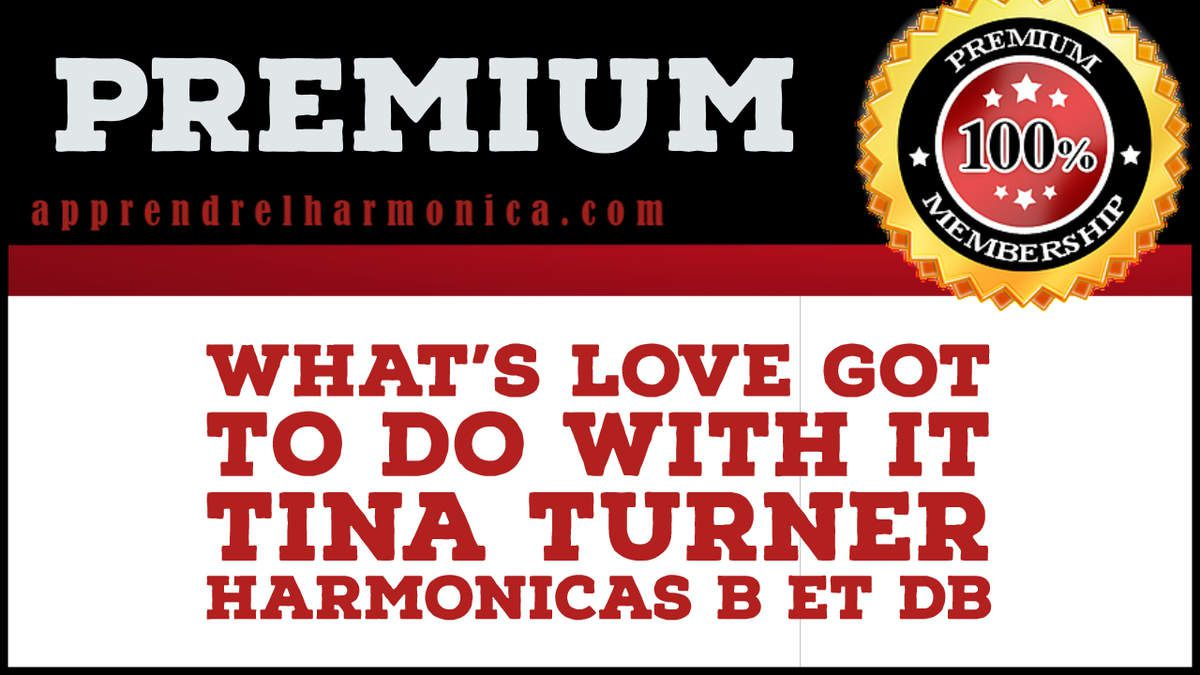 What's Love Got to Do with It - Tina Turner - Harmonicas B et Db